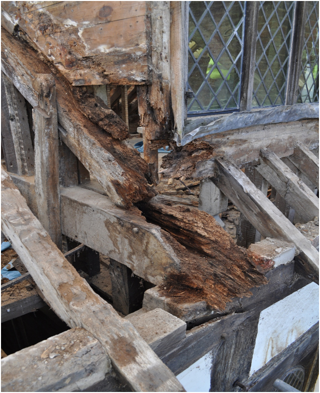 A severely rotten oak tie beam end corner to the dorma, caused by water ingress. Here both wet rot and beetle infestation is evident. Also note that the wall plate has snapped due to lateral forces imposed from the roof load.
